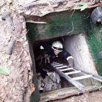 В Днепре из погреба спасатели достали щенка, — ФОТО
