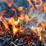 В Днепропетровской области объявили чрезвычайную пожароопасность