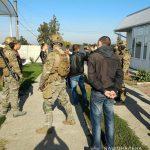 В Днепропетровской области обнаружили плантацию 5-метровой конопли, — ФОТО, ВИДЕО