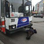 В Днепре мужчина  лег под колеса троллейбуса: движение на Гагарина парализовано, — ФОТО