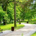 Днепряне просят помочь с обустройством зоны отдыха в Приднепровске