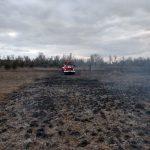 На Днепропетровщине на открытой местности горела сухая трава, — ФОТО