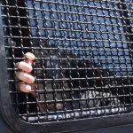Поліція затримала колишнього «смотрящого» від Януковича за Запоріжжям