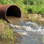Загрязнение земель отходами: в Каменском осудят владельца сельхозкомплекса