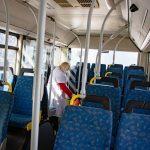 В Днепре ежедневно обрабатывают более 1000 автобусов, — ФОТО