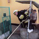 В Днепе спасатели достали кота из колодца, — ФОТО