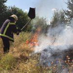 Массовые пожары в экосистемах Днепропетровщины: стала известна причина