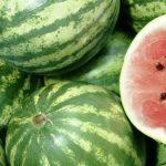 В Днепре арбузом можно отравиться: как правильно выбирать ягоду