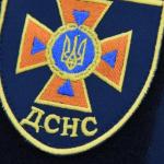 Днепровские спасатели поймали метровую змею у жилого дома, — ФОТО