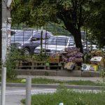 Бабушки с овощами и много арбузов: в Днепре борются с уличной незаконной торговлей, — ФОТО