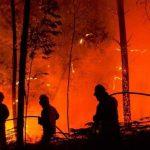 Пожарные объяснили, почему горят экосистемы Днепропетровщины