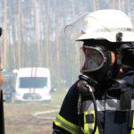 Київщина: на полігоні в Дівичах горить ліс