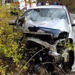 В Україні від початку року в ДТП загинули 2842 людини – патрульна поліція