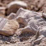 Под Днепром археологи нашли древние коньки из кости животного, — ФОТО
