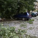 У Львові знову пройшла сильна гроза: влада повідомляє про зупинку електротранспорту і обвал дерев