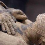 В останках египетской мумии обнаружили кокаин