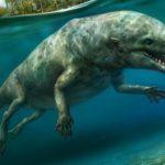 Четвероногий кит: ученые обнаружили в Египте останки кита, который мог передвигаться по суше