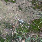 В Днепре на пр. Героев обнаружили гранату