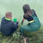 Под Кривым Рогом произошла экологическая авария и погибла рыба