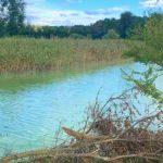 Экологи передали в полицию результаты расследования экологической аварии под Кривым Рогом
