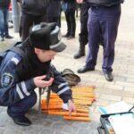 На свято 14 жовтня поліція переходить на посилений режим роботи